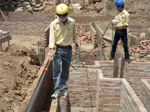 Xử lý mối nền móng công trình xây dựng