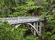 10 cây cầu đẹp và lạ nhất thế giới