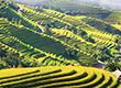 10 điểm du lịch nổi tiếng nhất Việt Nam
