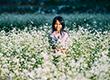 10 loài hoa đẹp đặc trưng cho tháng 3