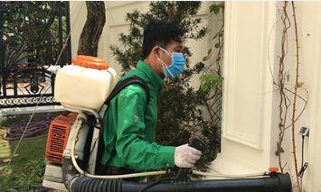 Dịch vụ diệt kiến cho biệt thự bằng hóa chất ngoại nhập tốt nhất