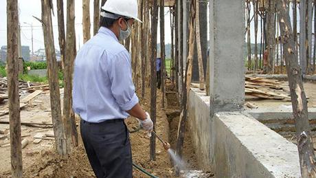 Phòng chống mối cho công trình xây dựng