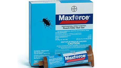 Ảnh:  Thuốc diệt gián MAXFORCE FORTE